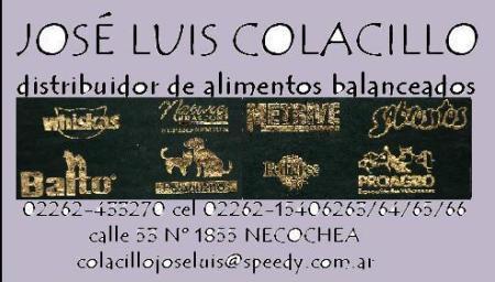 colacillo5